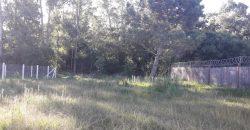 Terreno Atlàntida Pinares Norte